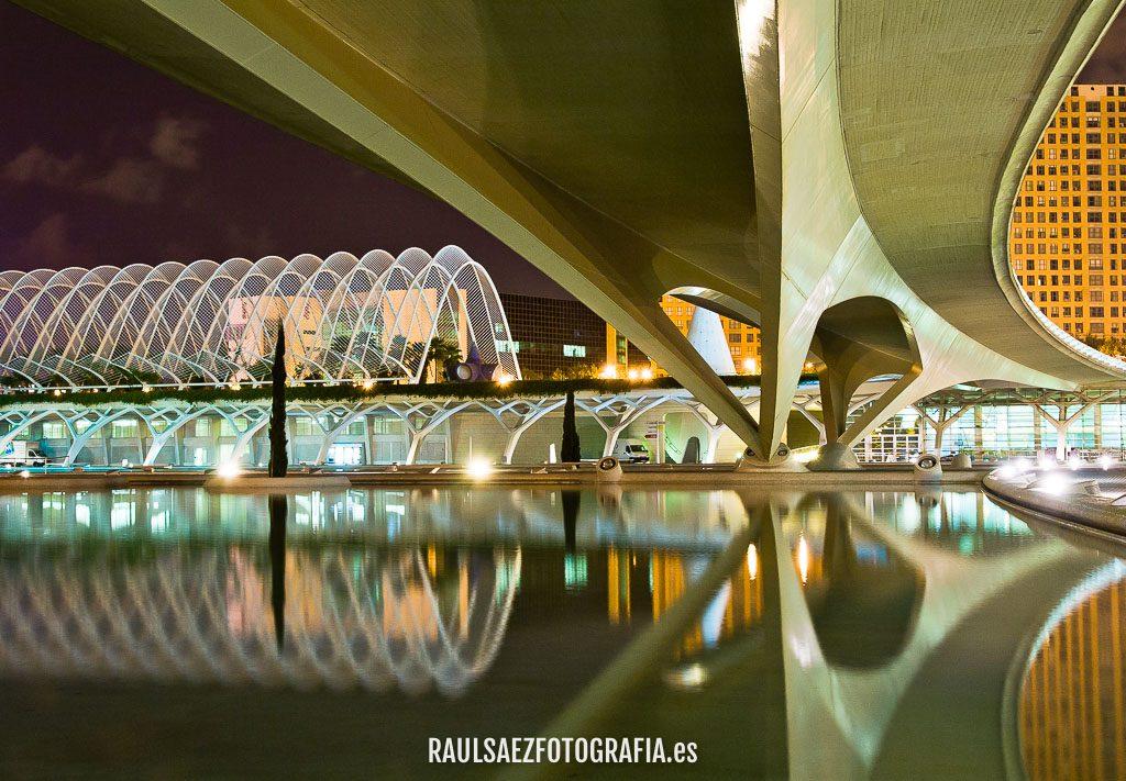 Puente en la Ciudad de las Artes y las Ciencias 10