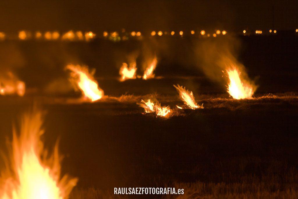 La danza del fuego 7