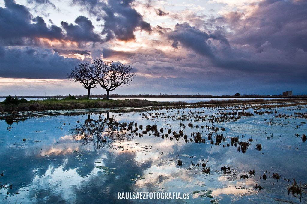 Amanecer en los arrozales 2