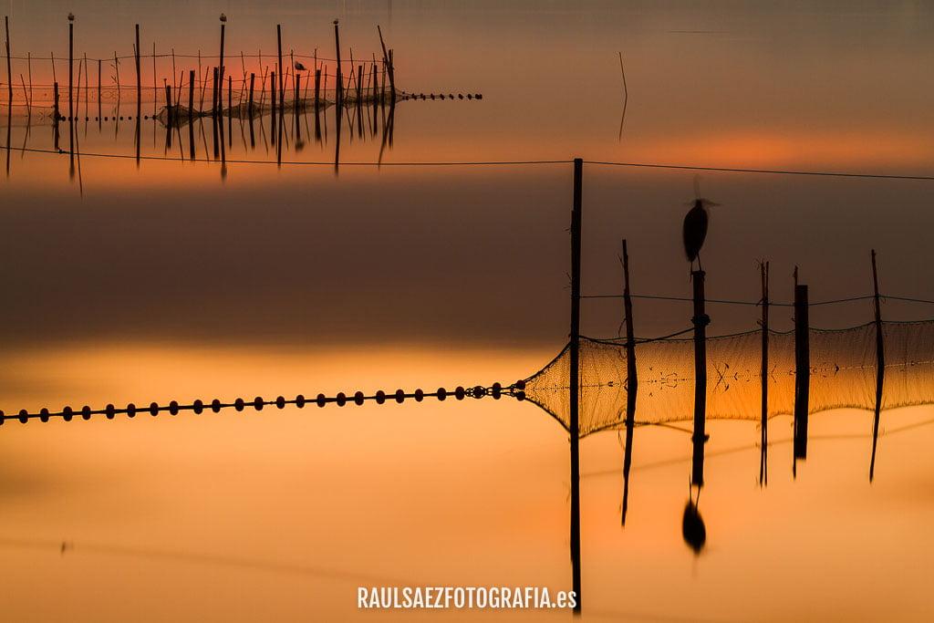 albufera, atardecer, aves, garza, paisaje, pesca, redes, valencia
