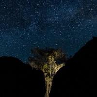 Y – Noches de montaña