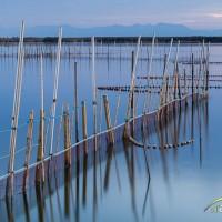 Aparejos de pesca en el lago